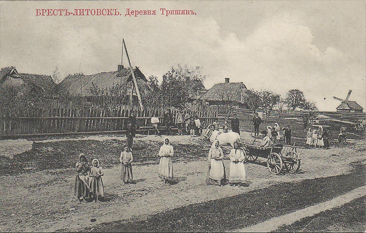 Деревня Тришин